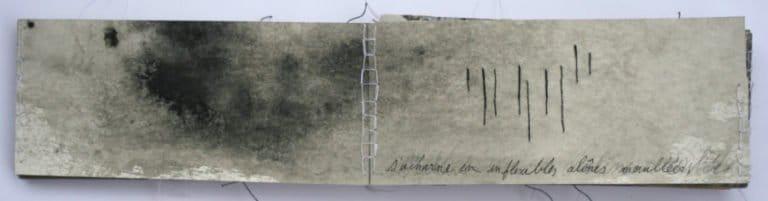 Livre d'artiste - il pleut -Viviane Michel