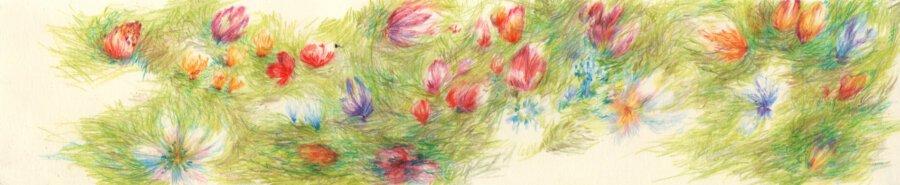 Livre d'artistes - Parcelle Ana - Viviane Michel