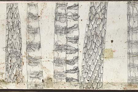 illustration au crayon et à l'encre d'une fôret