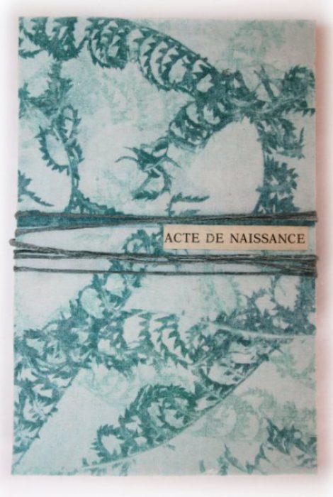 viviane-michel-livre-artiste-acte-naissance-001