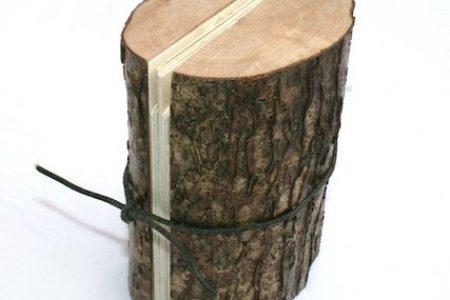 viviane-michel-livre-artiste-arbre-hote-01