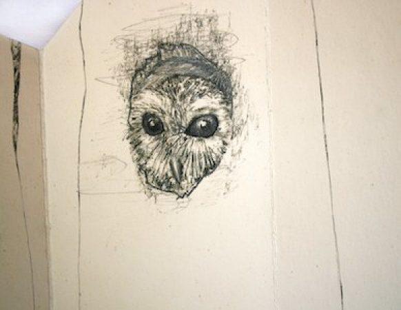 viviane-michel-livre-artiste-arbre-hote-03